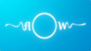 O que é Flow?